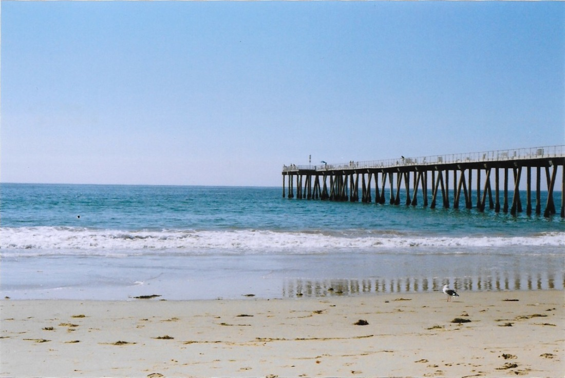 Everyone loves a good pier - Hermosa Beach