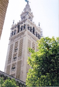 View of Sevilliano oranage trees, infront on the Giralda in Seville