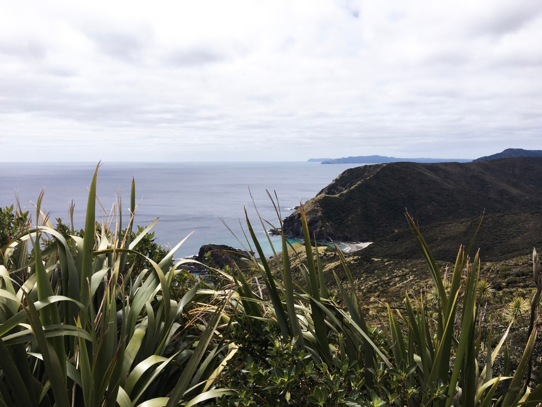 Cape Reinga, the most northern point of New Zealand